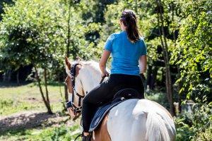 9 важни правила при започване на конна езда и посещение в конна база